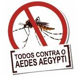 mosquito pequeno